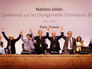 Sustentabilidad medioambiental y empresas